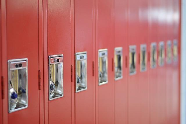¿Cuáles son las mejores taquillas para colegios?
